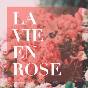 la-vie-en-rose-jewels