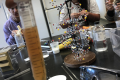 DNA extraction, 7 March 2019