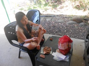 Khanh Nguyen '14 sorting pottery into piles of indicative and nonindicative sherds